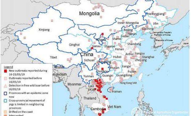 Focos de fiebre porcina en China y países limítrofes. Fuente: FAO.