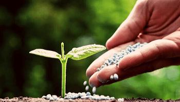 Nutrición sustentable, el eje de la nueva edición del Simposio Fertilidad