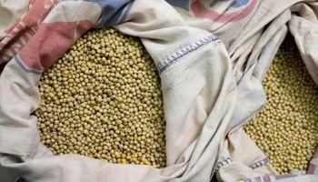 Cómo impactó sobre los precios locales la fuerte suba de soja, trigo y maíz en Chicago