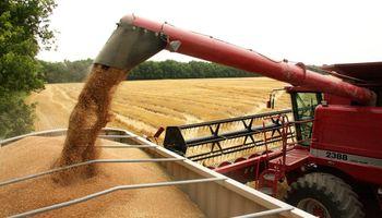 Cayó el financiamiento de Bancos a los productores de granos