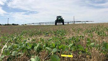 ¿Cómo podemos asegurar el éxito de las aplicaciones fitosanitarias?