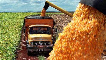 El campo bonaerense rechaza la suba del 23% en las tarifas para los fletes de granos
