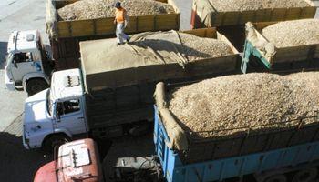 Sigue elevada la incidencia del flete sobre el valor de los granos