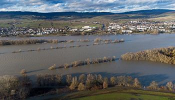Fuertes subas para el trigo: al clima adverso en Estados Unidos se suman las inundaciones en Alemania