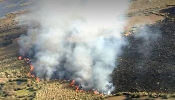 Piden que la Justicia sancione a los titulares de las islas por la quema de pastizales