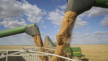 Giros del Fondo Sojero mejoraron a pesar de la caída de precios