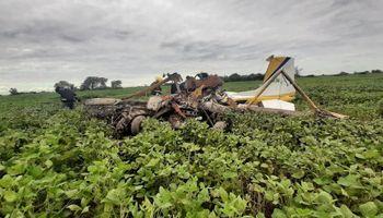 Lo salvó su experiencia: un piloto se estrelló en un campo y evitó una tragedia