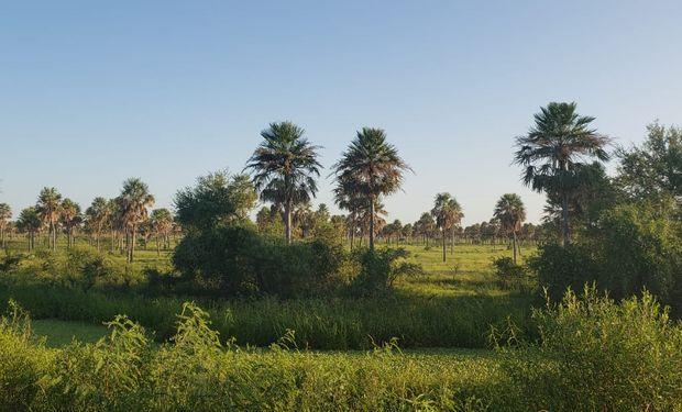 Costamagna recorrió el norte provincial donde pudo visitar campos, dialogar con pobladores de la zona y ver estado actual de los pastizales naturales.