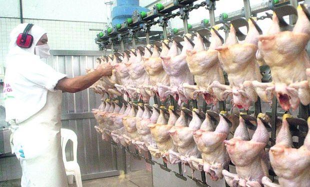 El precio del pollo bajó el 4,6% en mayo y la producción aumentó el 6%, lo que genera una sobreoferta en el mercado interno.