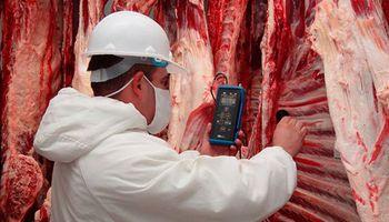 """Precios de la carne, bajo el """"efecto heladera"""""""