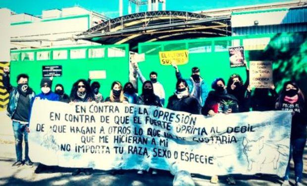 A los bifes: trabajadores de dos frigoríficos se enfrentaron a un grupo de veganos