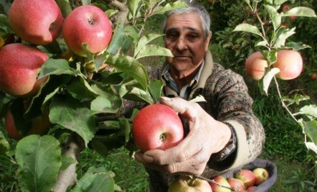 Datos de un informe realizado por la Federación de Productores de Frutas de Río Negro y Neuquén junto con CAME.