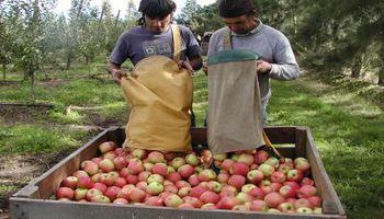 Reunión en Agroindustria por el precio de la fruta