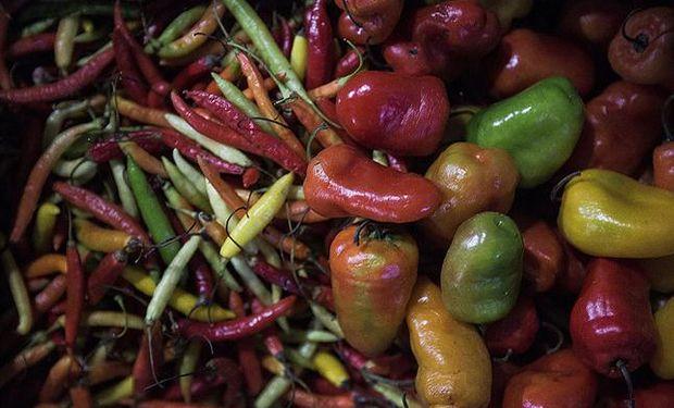 Gracias al trabajo de la comunidad boliviana en la Argentina, llegan a los hogares la mayoría de las frutas y verduras frescas. Fuente: La Nación.
