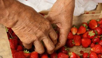 Somos la Tierra: una obra que refleja la realidad de la agricultura familiar argentina