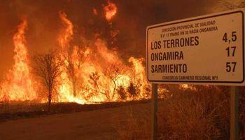 El impacto de los incendios forestales en Córdoba: ¿cómo afectó a la producción ganadera durante el 2020?