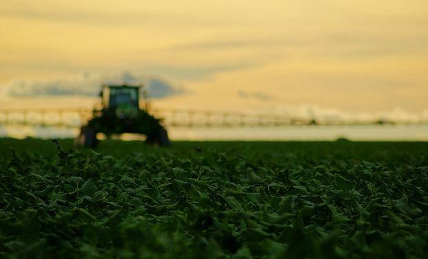 Proyectan a futuro una baja de U$S 100 en el precio de la soja