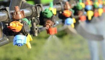 Fungicidas: cinco claves para aplicarlos en soja