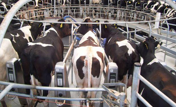 La lechería mundial atraviesa por un momento de dificultades, tanto en la demanda como en sus precios.