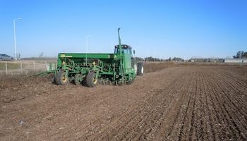 A pesar de los excesos, la siembra de trigo avanza un 17% más que las últimas 5 campañas