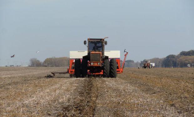 El poco trigo que se producirá será realizado con un bajo/medio nivel tecnológico.