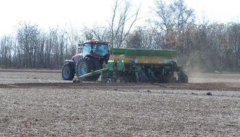 Entre Ríos: la mayor parte de la siembra de trigo fue en julio debido a las lluvias