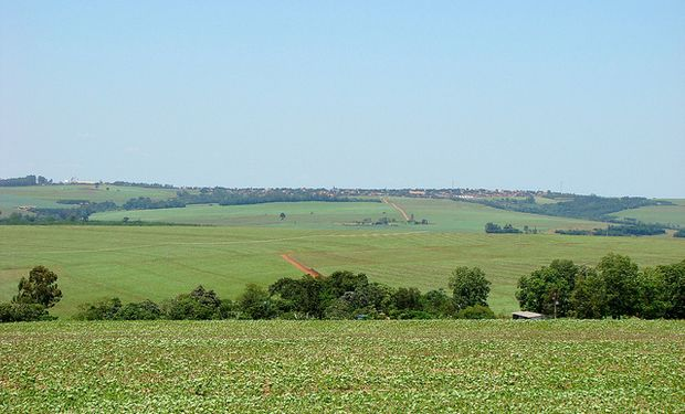 Mato Grosso podría implantar más soja de segunda