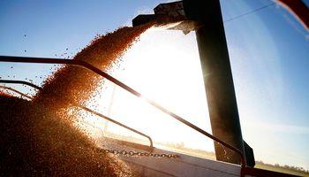 Ministros de Agricultura del G20 se reúnen para impulsar la producción sostenible de alimentos