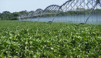 Invertirán U$S 7.000 para duplicar el riego en Argentina