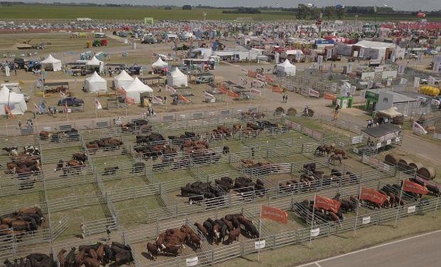 Expoagro 2020 edición YPF Agro continúa potenciando la cadena de ganados y carnes.