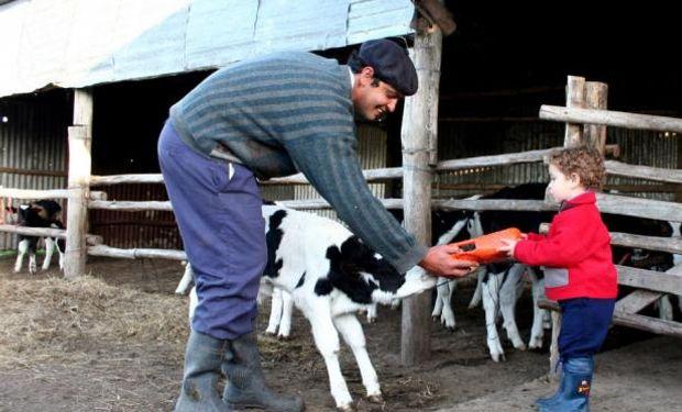 Si las vacas no se preñan no producirán leche y por consiguiente, la empresa no tendrá ingreso de dinero.