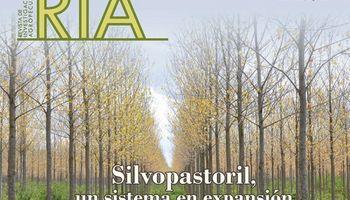 Forestación y ganadería, una combinación sostenible