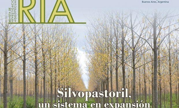 Forestación y ganadería, una combinación sostenible.