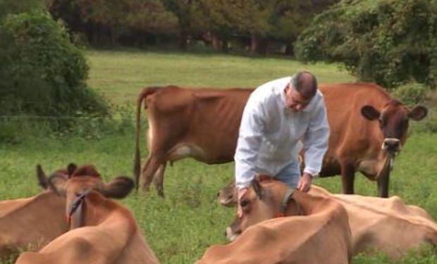 Avances en la aplicación de buenas prácticas para la cadena de bovinos para carne