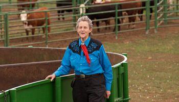 Cómo se volvió Temple Grandin una referente mundial en bienestar animal: sus consejos para el manejo del rodeo
