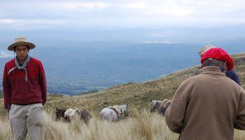 El régimen jubilatorio en el trabajo rural