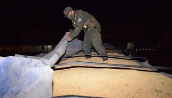 Contrabando de granos: detienen a tres gendarmes en una investigación por el cruce ilegal de camiones