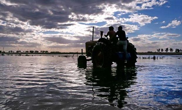Los productores temen más lluvias que agraven la inundación. Foto: Diego Lima
