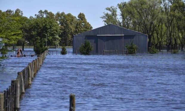 El 60% de la superficie de General Villegas está afectada por las inundaciones desde hace 20 meses.