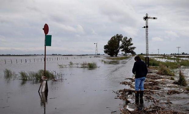 En General Villegas el agua avanza sobre los campos. Foto: Diego Lima.