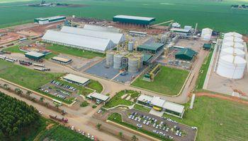Tomando el dólar informal, el etanol cotiza a US$ 0,21 en Argentina, un 138 % menos que en Brasil