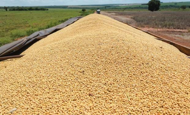 La AFIP negó cambios en la liquidación de granos.