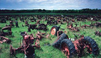 Siete mitos sobre el campo desterrados de raíz