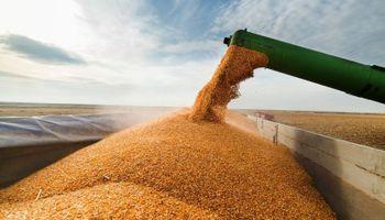Fijan nueva tarifa para el transporte de granos en la provincia de Buenos Aires