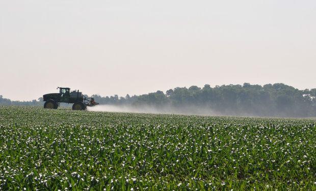 No debería haber glifosato en los sistemas agrícolas durante todo el año, porque es uno de los herbicidas con menor permanencia en el suelo.