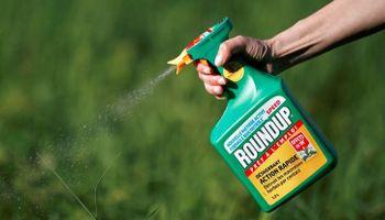 La agencia medioambiental de Estados Unidos comunicó su postura sobre el uso del glifosato