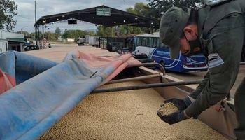 Gendarmería decomisó 296 toneladas de soja por irregularidades en la carta de porte