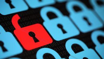 Datos abiertos en el agro: cuando el acceso a la información iguala la toma de decisiones