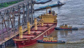 Gobierno ruso anunció que aplicará derechos de exportación