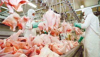 Piden baja en el IVA para aves y cerdos